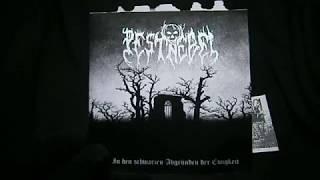 PESTNEBEL - In den schwarzen Abgründen der Ewigkeit