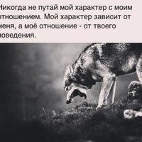 Анкета Руслан Волков