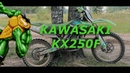 KAWASAKI KX250F ЗЛАЯ ЖАБА
