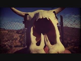 Rock y vaca! ¡mu! 🐮 🎹