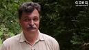 Юрий Болдырев - Мошенники во власти