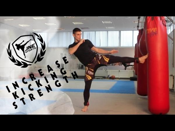 Обучение сильных ударов ногами скоростно силовая тренировка на ноги