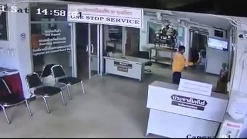 Змея заползла в полицейский участок и попыталась укусить тайца