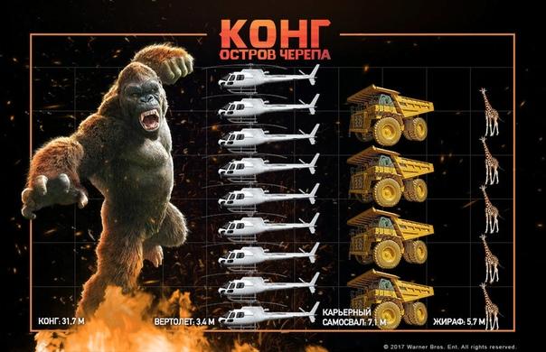 Сколько всего было Кинг-Конгов Только что пришел с фильма Кинг-Конг. Вы наверное в курсе, что их уже было несколько. Наверняка вы все не смотрели. Давайте вспомним сколько их было и скажу в