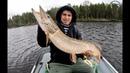 Ловля крупной щуки на джиг в Карелии. Трофейная рыбалка в Карелии. Ловля судака на джиг.