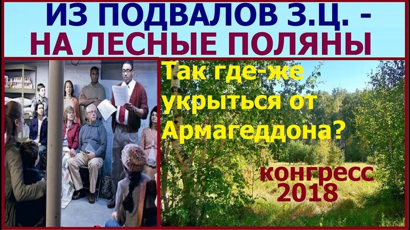 4.16. Из подвалов Залов Царства -- на лесные поляны