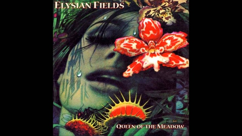 Elysian Fields - Barely Recognize You