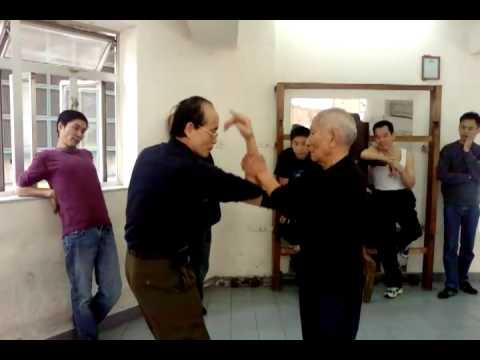 Grandmaster Ip Chun chi sau with sifu hokay