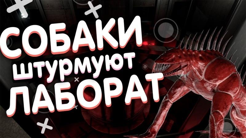 СОБАКИ ШТУРМУЮТ ЛАБОРАТОРИЮ В SCP SECRET LABORATORY!