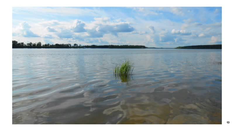 Slideshow: река Обь 🎤Жабий разговор.10.6.2019. ©📷🎤VA.