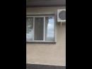Video-d23f4813988e145b8402034e35e318c6-V.mp4