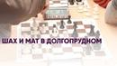 Шах и мат в Долгопрудном Новости Долгопрудного