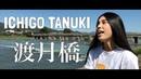 「名探偵コナン」ICHIGO TANUKI - 渡月橋 (倉木麻衣 アコギ カバー) Mai Kuraki - Togetsu-kyo (Detective Conan)