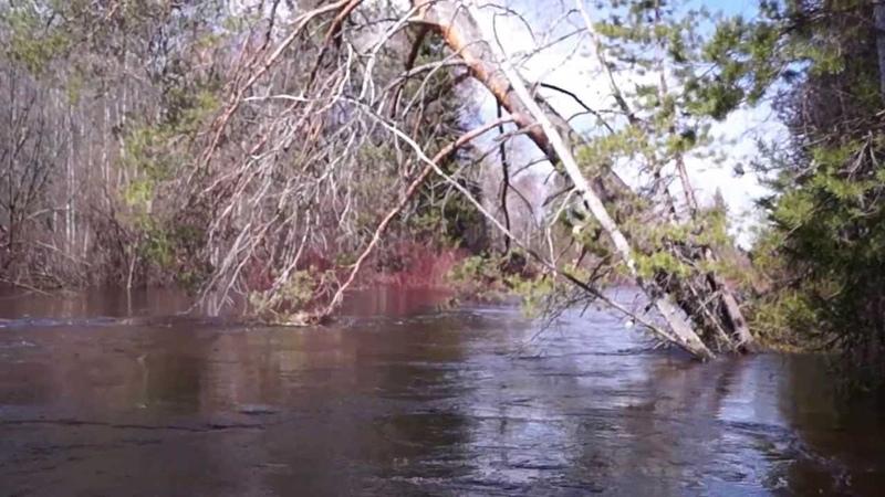 20130508135008 Сплав по таёжной реке весной в половодье