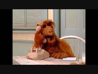 Alf Quote Season 1 Episode 24_Схожу с ума