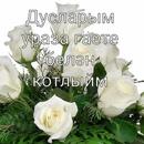 Закир Фаттахов-Мухаметов фото #23