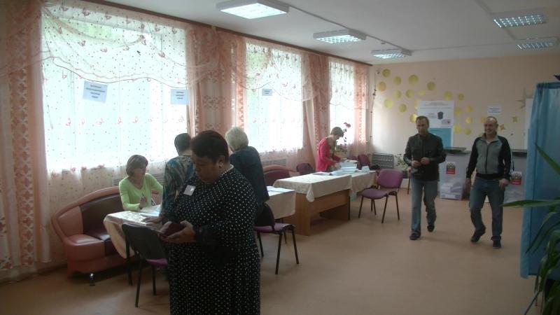 Выборы в Совет депутатов Волошово