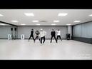 Alan Walker The Spectre dance version