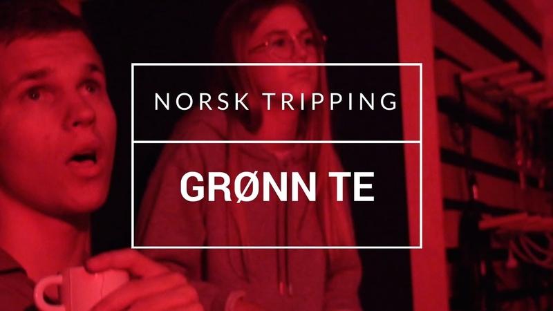Norsk Tripping - Grønn Te [OFFISIELL MUSIKKVIDEO]: YLTV