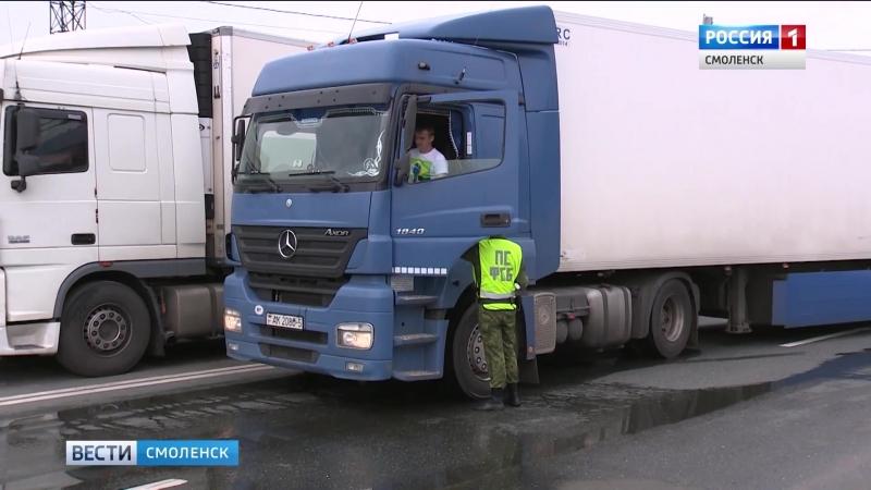 Более 700 иностранцев задержали смоленские пограничники с начала лета