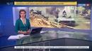 Новости на Россия 24 О Ракке либо хорошо либо никак курды прорвали блокаду старого города