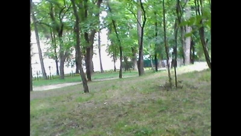 НАСТЯ КОРМИТ БЕЛКУ 7 07 18