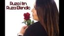 Ruža Efendić - Ruža i trn