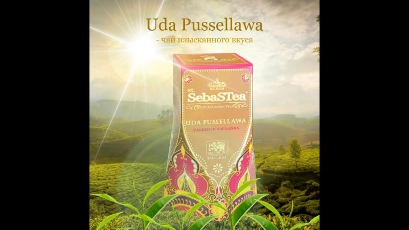Черный чай «Уда Пусселлава» из коллекции «Регионы Цейлона»