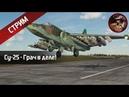 Су-25 - Грач в деле! (DCS World stream) | WaffenCatLive