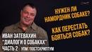 Иван Затевахин Диалоги о собаках на канале Лаборатория Научных Видео Серия №2