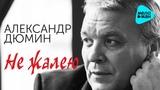 Александр Дюмин - Не жалею (Альбом 2016)