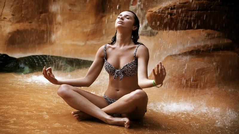 🔴 Meditation Music 24/7: Healing Music, Relaxing Music, Study Music, Sleep Music