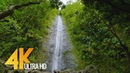 Gorgeous Waterfalls in 4K 60fps 2160p Soothing Nature Video for Relaxation Oahu Waterfalls 5 HRS