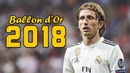 Luka Modrić Ballon d'Or 2018 ● Skills Goals 🇭🇷