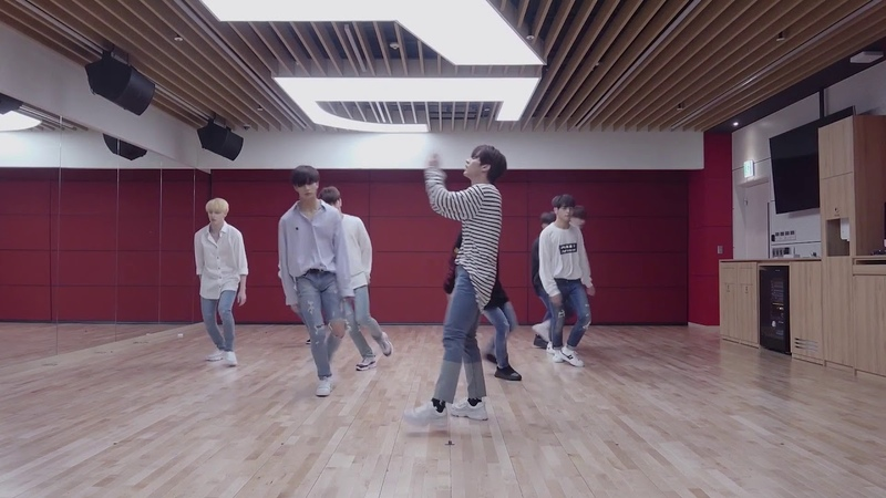 [mirrored 50% slowed] Stray Kids - I am YOU Dance Practice