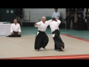 Aikido Yokota Yoshiaki - 56th All Japan Aikido Demonstration 2018