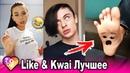 ЛУЧШИЕ ВИДЕО КВАЙ И ЛАЙК 2019 ПРИКОЛЫ Kwai Like Самые Няшные и Прикольные Видео