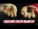 Сделай свой выбор: Хочешь заработать 100 000 рублей за месяц или нет