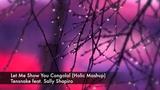 Tensnake feat. Sally Shapiro - Let Me Show You Congolal (Holic Mashup)