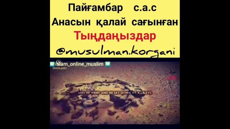 Video1541361266281.mp4