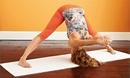 Пазл для йога