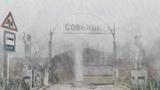 Everlasting summer #coub, #коуб