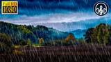 10 Часов Шума Дождя Для Учёбы, Сна, Снятия Стресса и Релаксации
