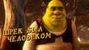 ШРЕК БЫЛ ЧЕЛОВЕКОМ ТЕОРИЯ ОТ NICKLESS