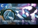 CV Parametric Selection Tag for Cinema 4D