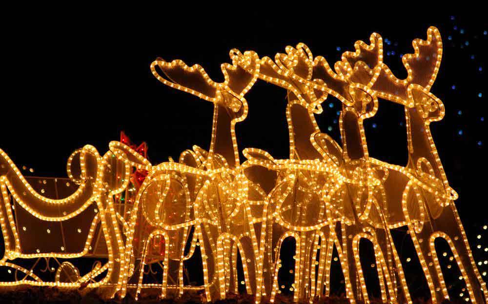 Рождественский световой дисплей во дворе