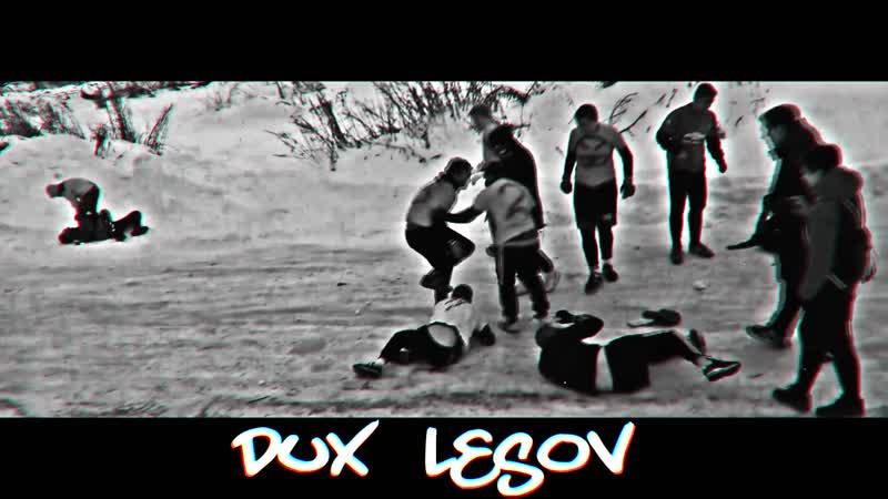 ㄠ DUX LESOV 16