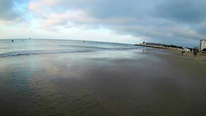Монолог орнитолога на пляже Чипипи Салинас FHD0437