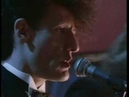 Lyle Lovett: She's No Lady