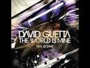 David Guetta - The World Is Mine F Me Im Famous Remix by David Guetta Joachim Garraud
